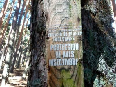 Hoyos glaciares El Nevero, Peña el Cuervo; viaje senderismo;viajes grupos
